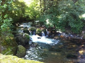 Río en Somiedo