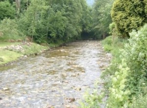 Río en Miranda de Belmonte